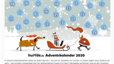 hunde.de Adventskalender Gewinnspiel 2020